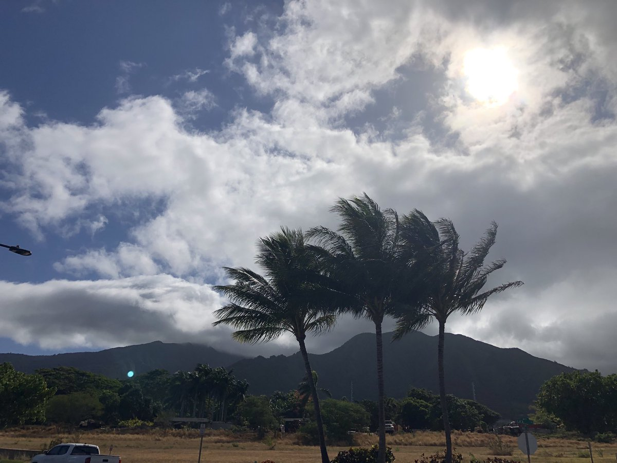 test Twitter Media - Windy and mild in Wailuku. #CMWeather #Maui #Wailuku #Mauinokaoi https://t.co/wTQg8G0jJo