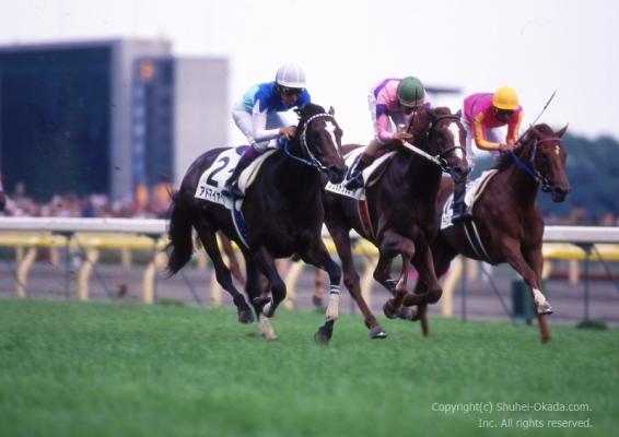 平成ダービー馬の肖像2(11年~20年) https://t.co/D7PZv2eVGC (ブログ更新)  #東京優駿 #日本ダービー #ダービー #東京競馬場 https://t.co/WIqE5jM2UK