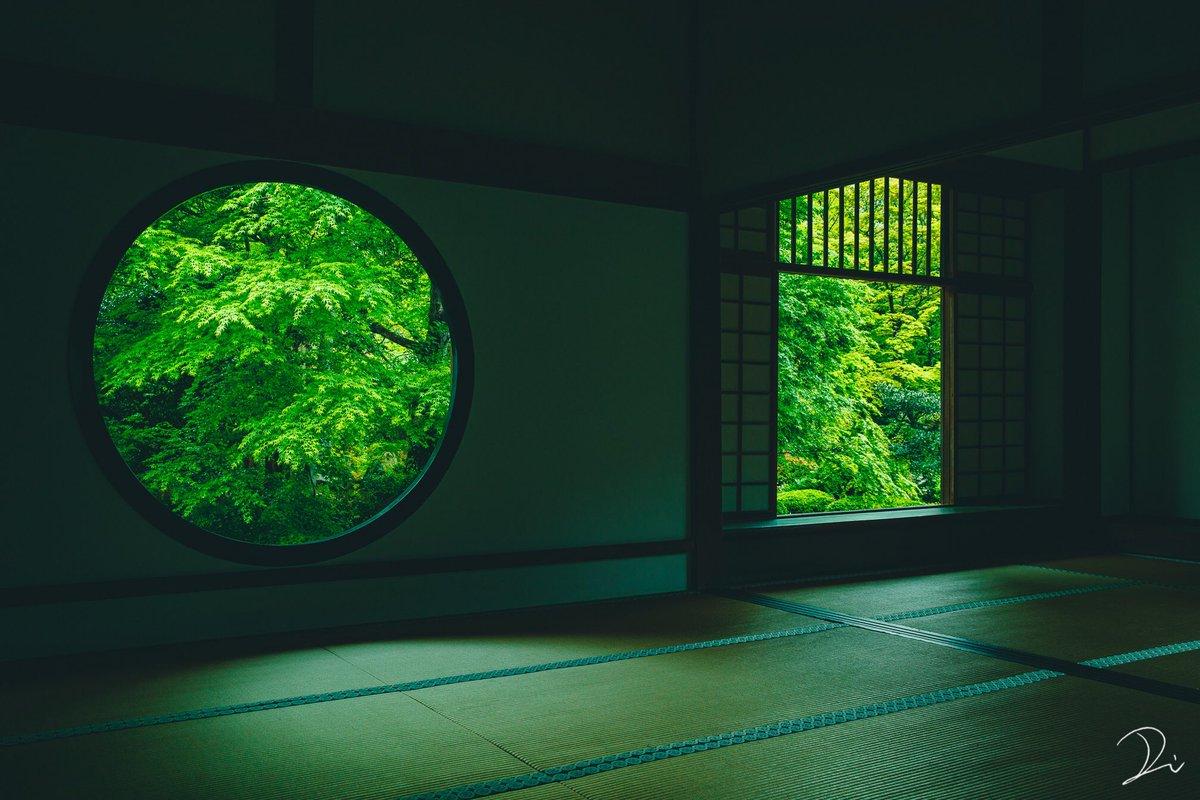 濃緑の京都。 https://t.co/aYJ6O6cfvW