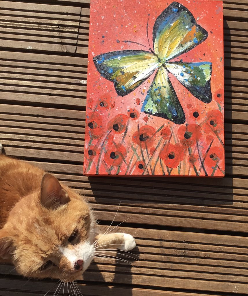 Have a lovely weekend all. Josh cat isinsoecting these paintings of butterflies.  Butterfly paintings now available in our Etsy store http://www.etsy.com/uk/shop/GingerCatCompany… Josh cat recommended.   #handcrafted #handmade #art #ArtistOnTwitter #painting #Butterflies #butterfly  #HandmadeInUKpic.twitter.com/BCGNqkVFSo