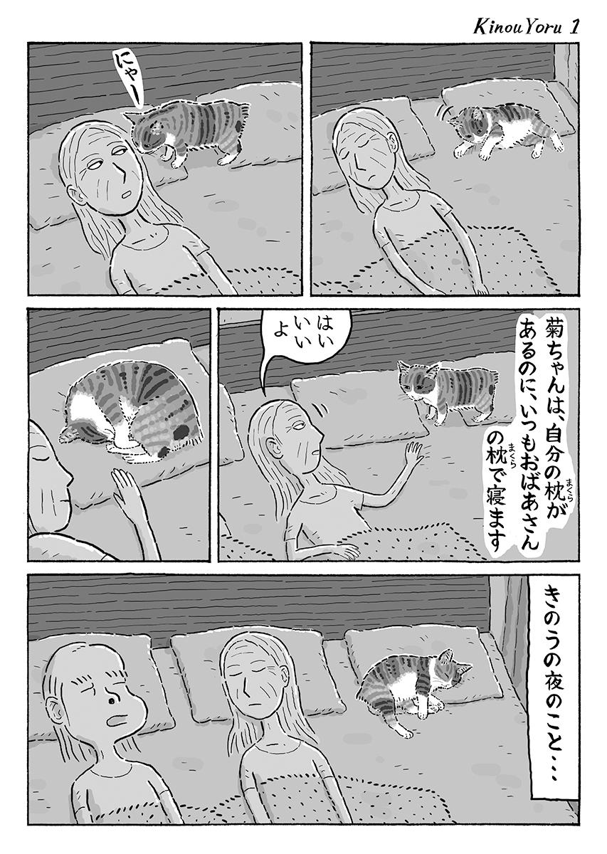 2ページ猫漫画「きのうの夜に」 #猫の菊ちゃん