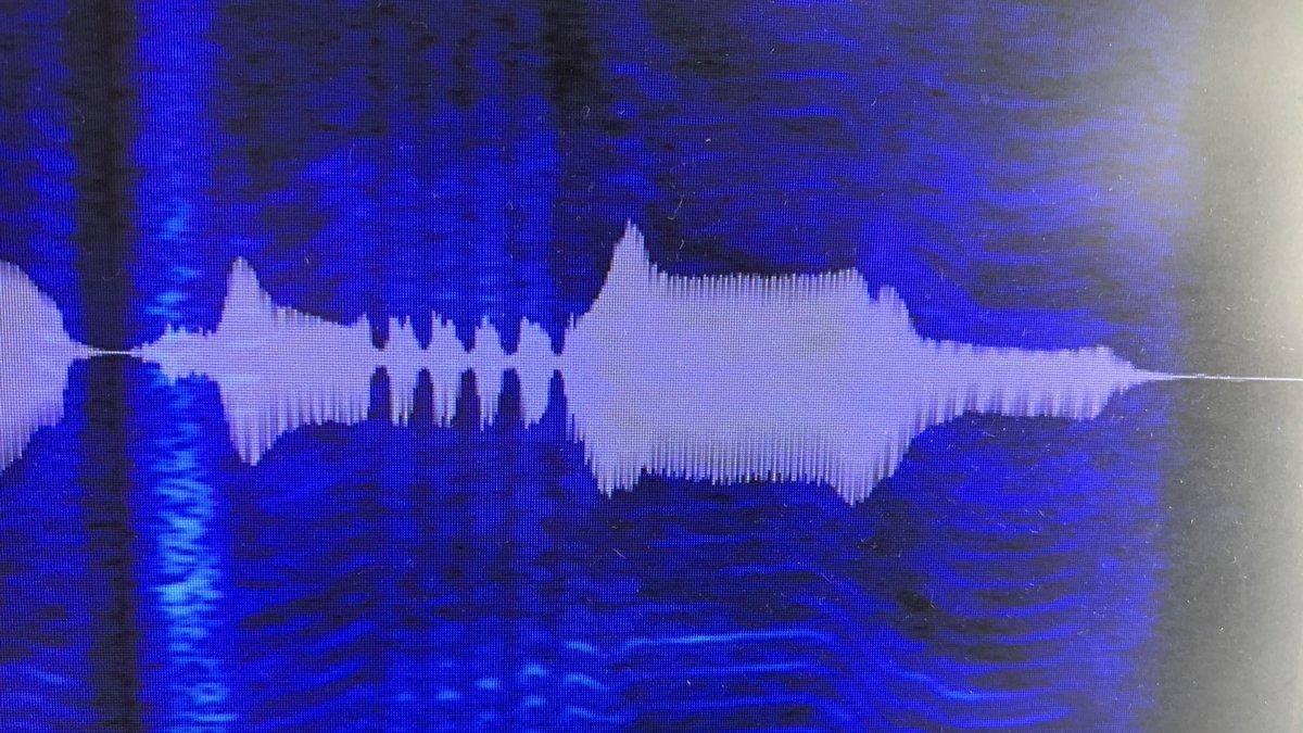 僕の巻き舌の部分の音声波形、魚の骨みたいでウケちゃうな。