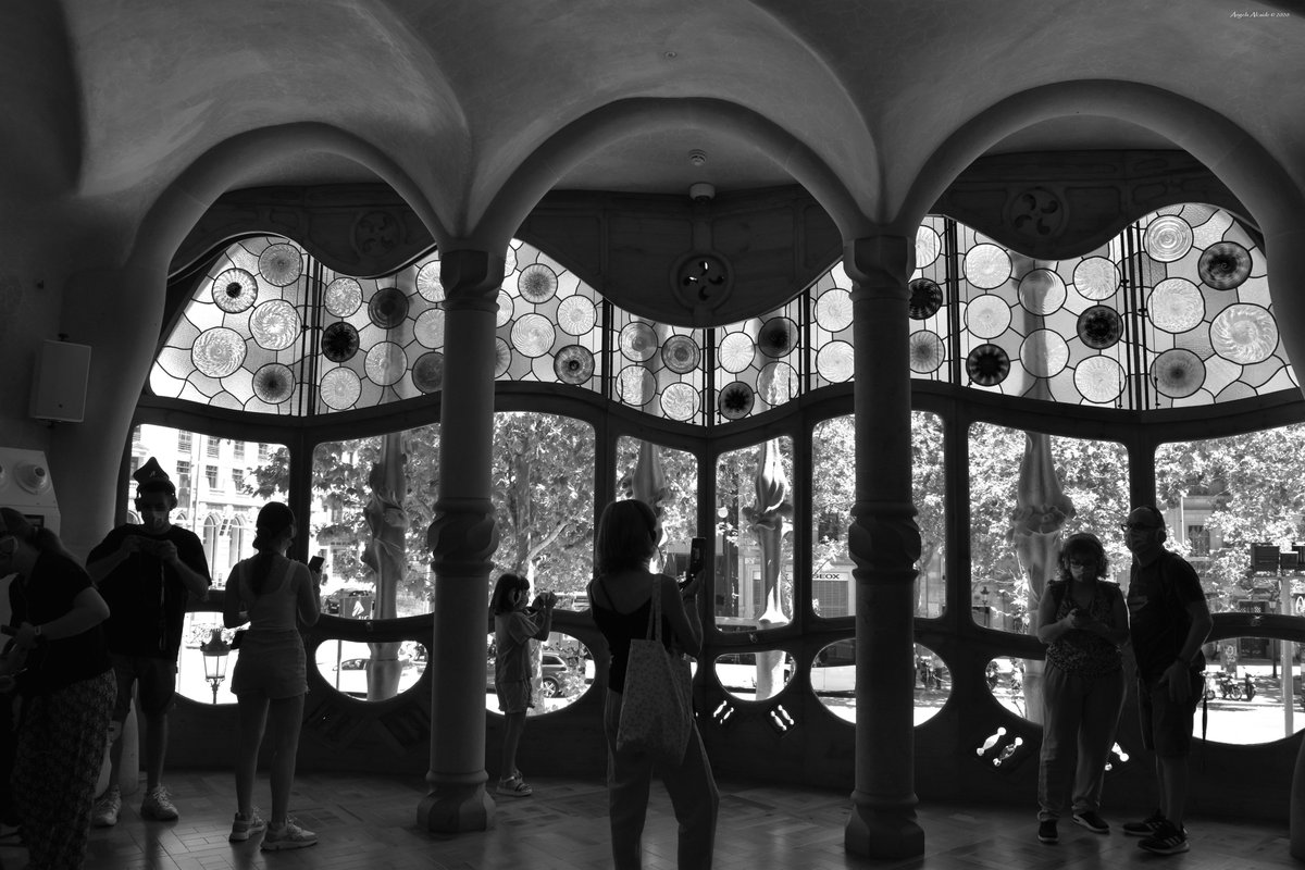 #Barcelona #photography #photo #bnwphotography #blackandwhite #blackandwhitephotography #blackandwhitephoto #blackandwhitephotos #monochromephotography #Monochrome #fotografia #street #StreetArt #streetphotography #streetphoto #urbanphotography  #noiretblanc #cityscapes #Nikonpic.twitter.com/AGxzfRuxpZ