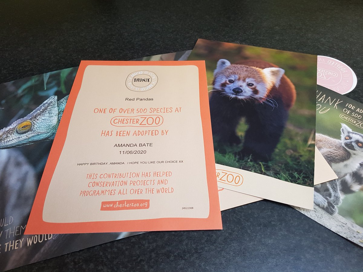 I've adopted a Red Panda @chesterzoo  Anything to help secure the zoo's future   #contentwriter #copywriter #proofreader #editor<br>http://pic.twitter.com/D9BuNCmiUE
