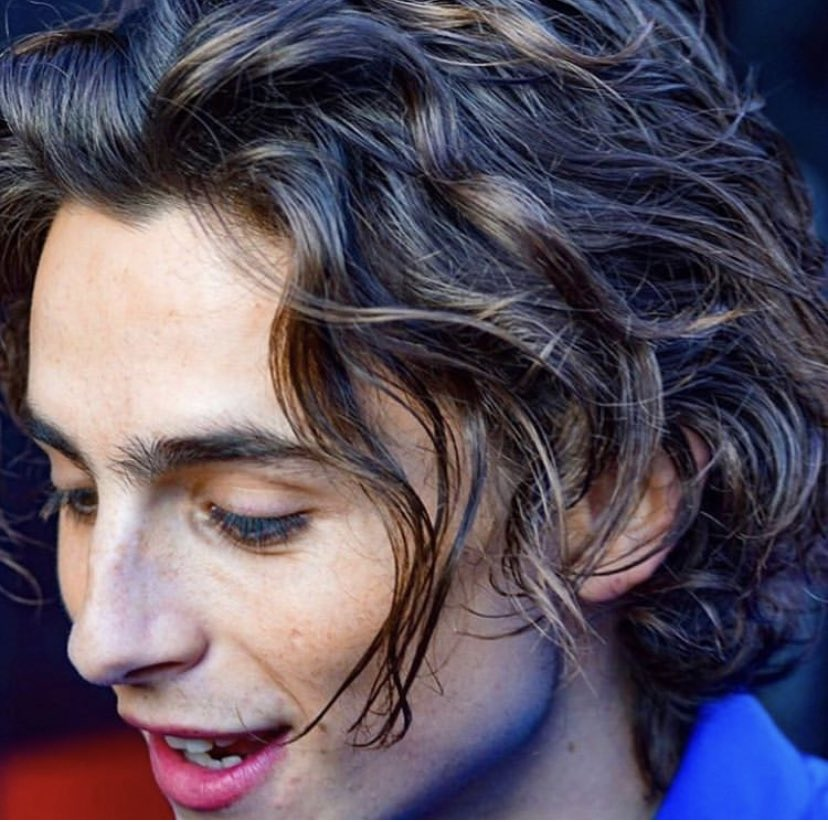 timothée chalamet in electric blue, snapping with those luscious curls send tweet