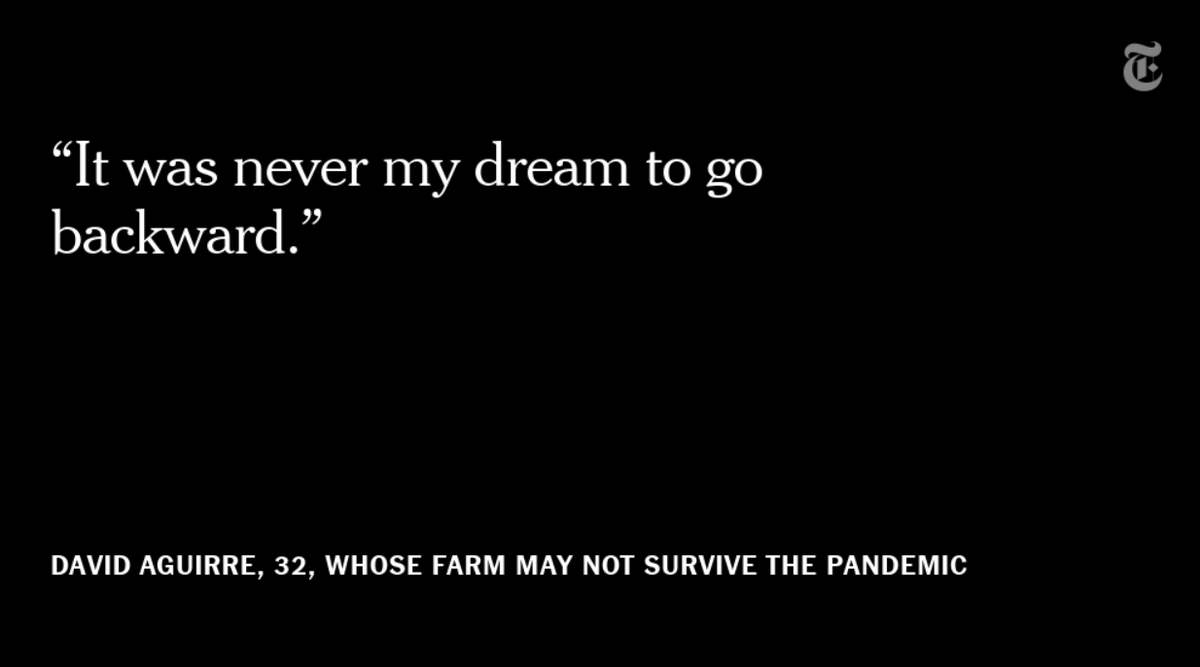 In El Rosal, there was David Aguirre, 32, once a low-level bodyguard who poured his life savings into a strawberry farm that opened a few months before the pandemic. When he met with reporters, he'd just had to kill off 1/4 of his crop, unable to find buyers or pay his workers. https://t.co/cMWofUOJsv