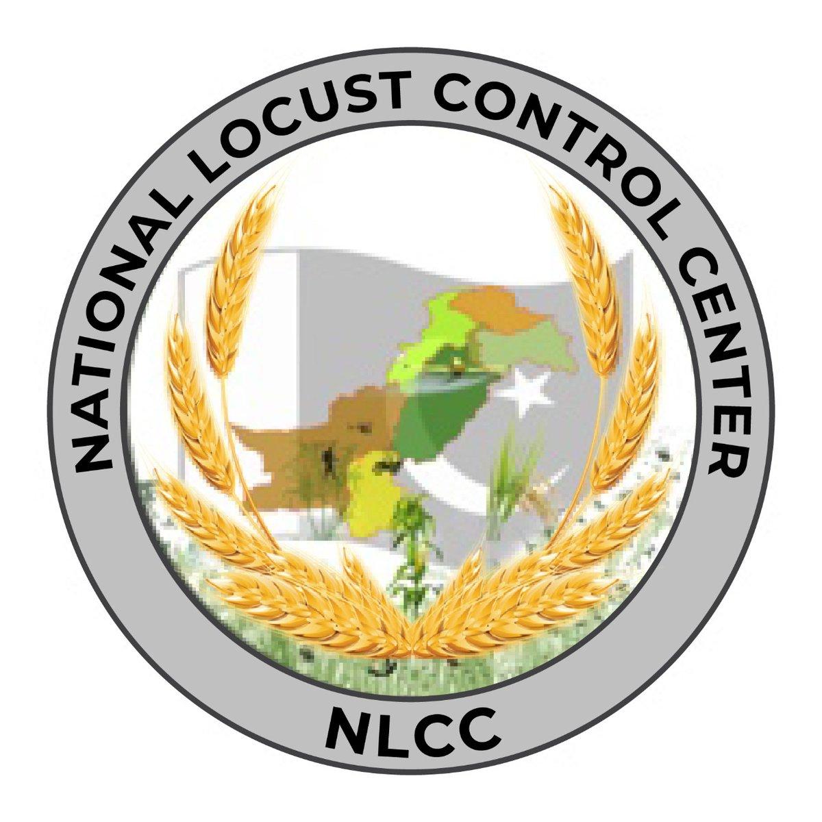 نیشنل لوکسٹ کنٹرول سنٹر کی جاری کردہ تفصیلات کے مطابق وزارت قومی غذائی تحفظ و تحقیق، محکمہ زراعت اور پاکستان آرمی کی مشترکہ ٹیمیں ملک کے مختلف اضلاع میں ٹڈی دل کے خلاف بھرپور سروے اور کنٹرول آپریشن کررہی ہیں،22 اضلاع کے متاثرہ علاقوں میں1032مشترکہ ٹیمیں اس مہم میں حصہ لے رہی ہیں۔