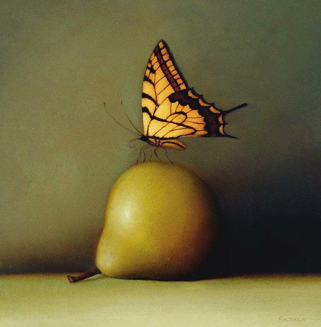 Las mariposas de Sarah Siltala, la delicadeza  pintada por esta observadora de la naturaleza. https://t.co/bsyOaqq8Rm