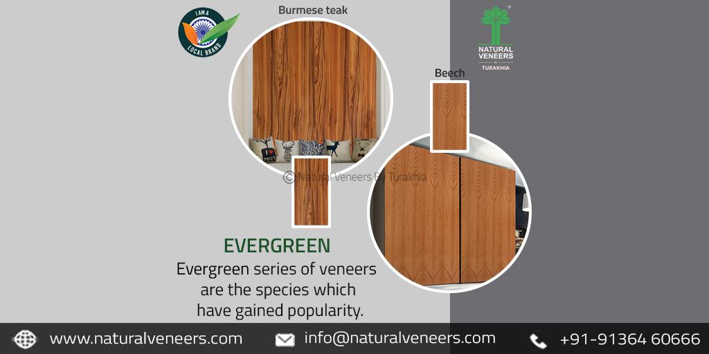 Evergreen Natural Veneers!!  To explore more: https://www.naturalveneers.com/series/evergreen-veneers…  Inbox for inquiries...  #interiordesign #interiorstyling #interiordecor #interiordecorating #interiordesignlovers #interiordesigntrends #architects #architecturepic.twitter.com/QbBqmA0KML
