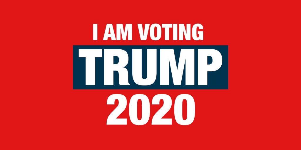 Vote for President Trump, SAVE AMERICA! #Trump2020 #Trump #POTUS #Republicans #MAGA #KAGA #USA #America #WhiteHouse #GodBlessPresidentTrumppic.twitter.com/5CWe3LesYH