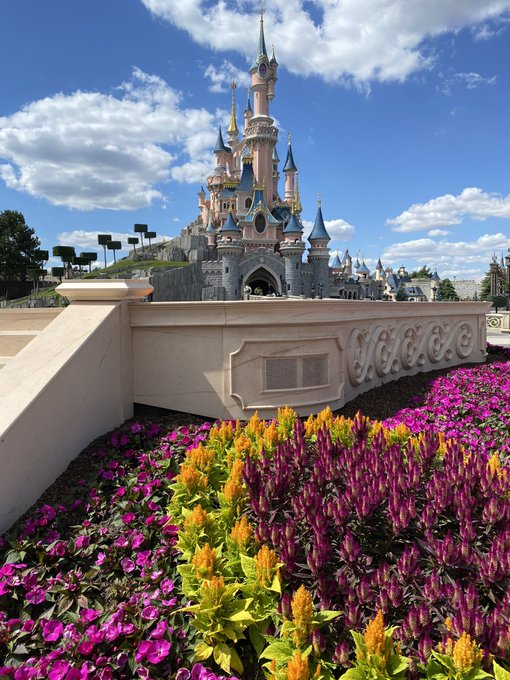 Disneyland Paris ouvert pendant la COVID-19 (juillet-octobre 2020)  - Page 2 EcpsZfxXsAEe99q?format=jpg&name=small
