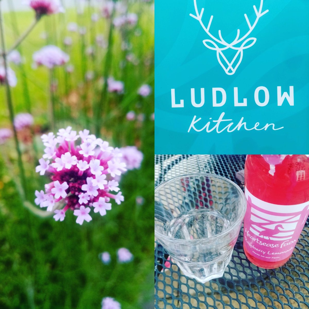 Saturday Happiness! Wonderful visit to @ludlowkitchen cafe today. Lovely coffee & cake, plus epic chips and aioli 😋 #ludlowfood #ludlow #localfood #localproduce #shropshire #Saturday #happiness #coffee #cake #daytrip #dayout #familytime #happinesstrainer #powys #herefordshire