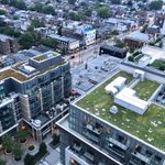Image for the Tweet beginning: Toronto has over 700 #greenroofs