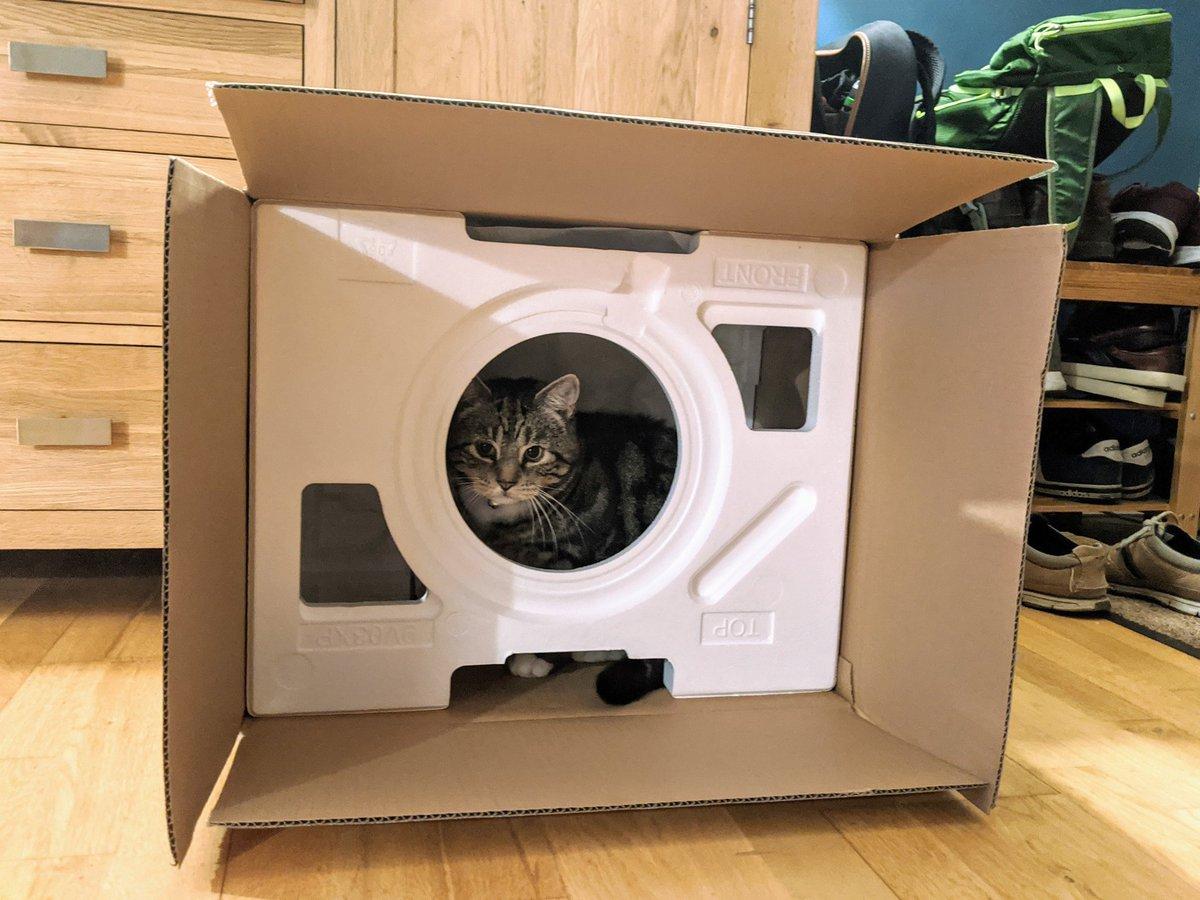 we got a new microwa- cat house. we got a new cat house. #caturday