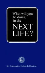 What Will You Be Doing In The Next Life? ▸  | #work #success #God