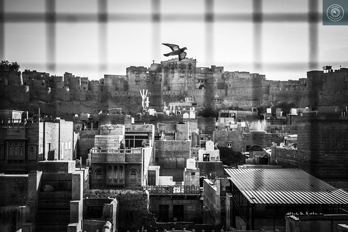 City pride @jaisalmerfort🏰 #myphotography #mymonsterclick💓💓💓 #nikond5300📷  #mymonster #jaisalmer #traveldiary #travelerview #triptoremember❤️ #traveldiaries #tbt🔙📸 #instapic #lovetocapture @NikonIndia   @my_rajasthan