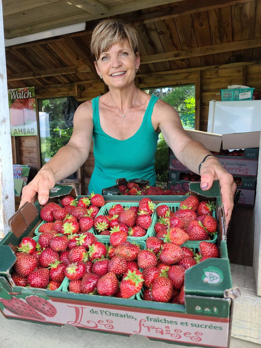 Ontario strawberries have come on strong as warm weather settles in. Antje Mueller shows off some the berries picked at Walch Family Farm south of Stratford. Photo by @Sharon_Grose #OntFarmerNews #OntAg #LocalFood