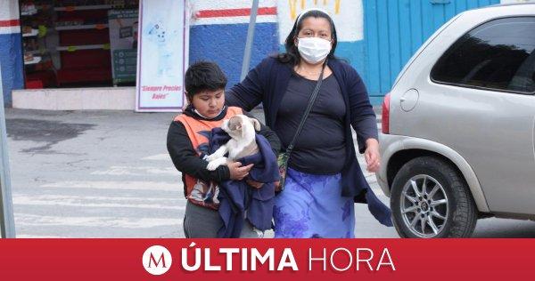 #ÚLTIMAHORA   México suma 34 mil 730 muertes y 295 mil 268 casos de #coronavirus  https://t.co/xhNkzhSSsD https://t.co/8S7bbXRVoT