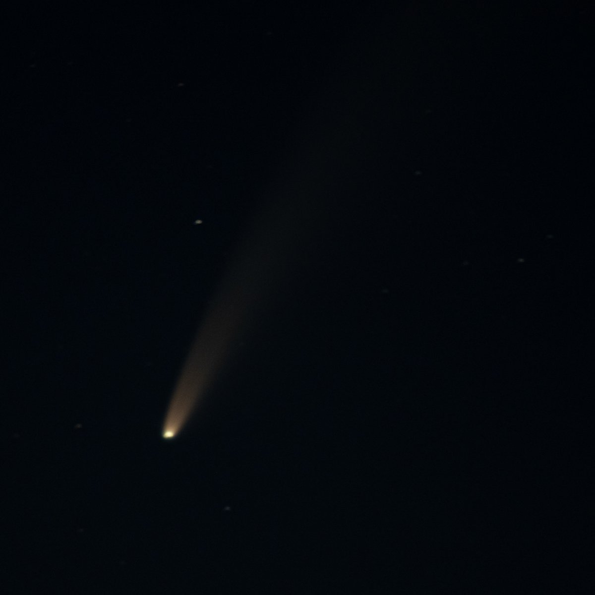 #NEOWISE