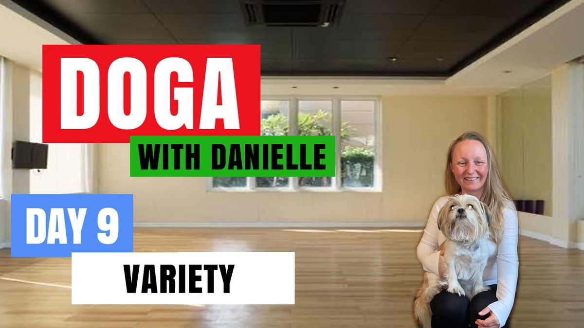 Day 9 - Variety • #DogaWithDanielle.  #ChildOfGod #ChildOfGodTeam #ChildOfGodMovement #Doga #Yoga #Movement #Breathe #Breathing #Health #Fitness #Malshi #Shitsu #Maltese #Dog #DogLover #LucyTheMaltese #MentalHealth #Spirituality #Recovery #Connection  https://t.co/9QPD3JwAEp https://t.co/x5wQOfQw0J