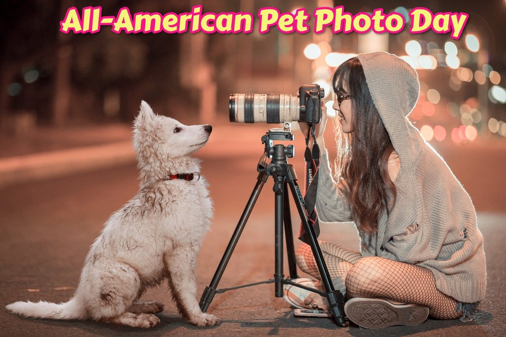 Today is All-American Pet Photo Day! Let's see those photos of your pets! #ik9academy #puppytraining #dogtraining #sandiego #puppiesofinstagram #puppies #puppiesforall #puppiesdaily #puppylove #puppy #puppylife #puppyoftheday #dogsofinstagram #dogsofig #dogscorner #dogslover #dogpic.twitter.com/ncEUFx6mef