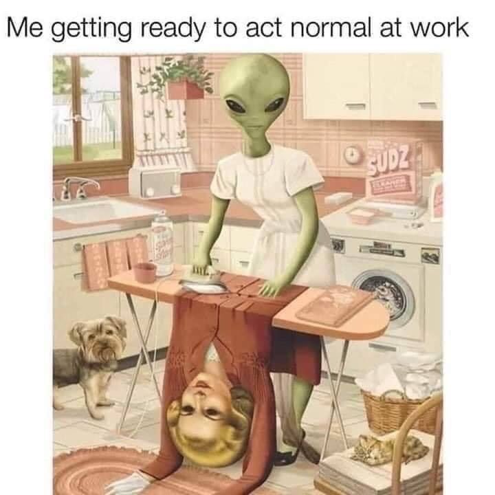 who else? . . . #funny #trippy #funnymeme #sillymeme #funnyaf #aliens #alien #trippyart #getyours #getyoursstores #getyoursvt #getyoursjohnson #shopvt #shoplocal #vtlocalpic.twitter.com/zDvPj7abK7