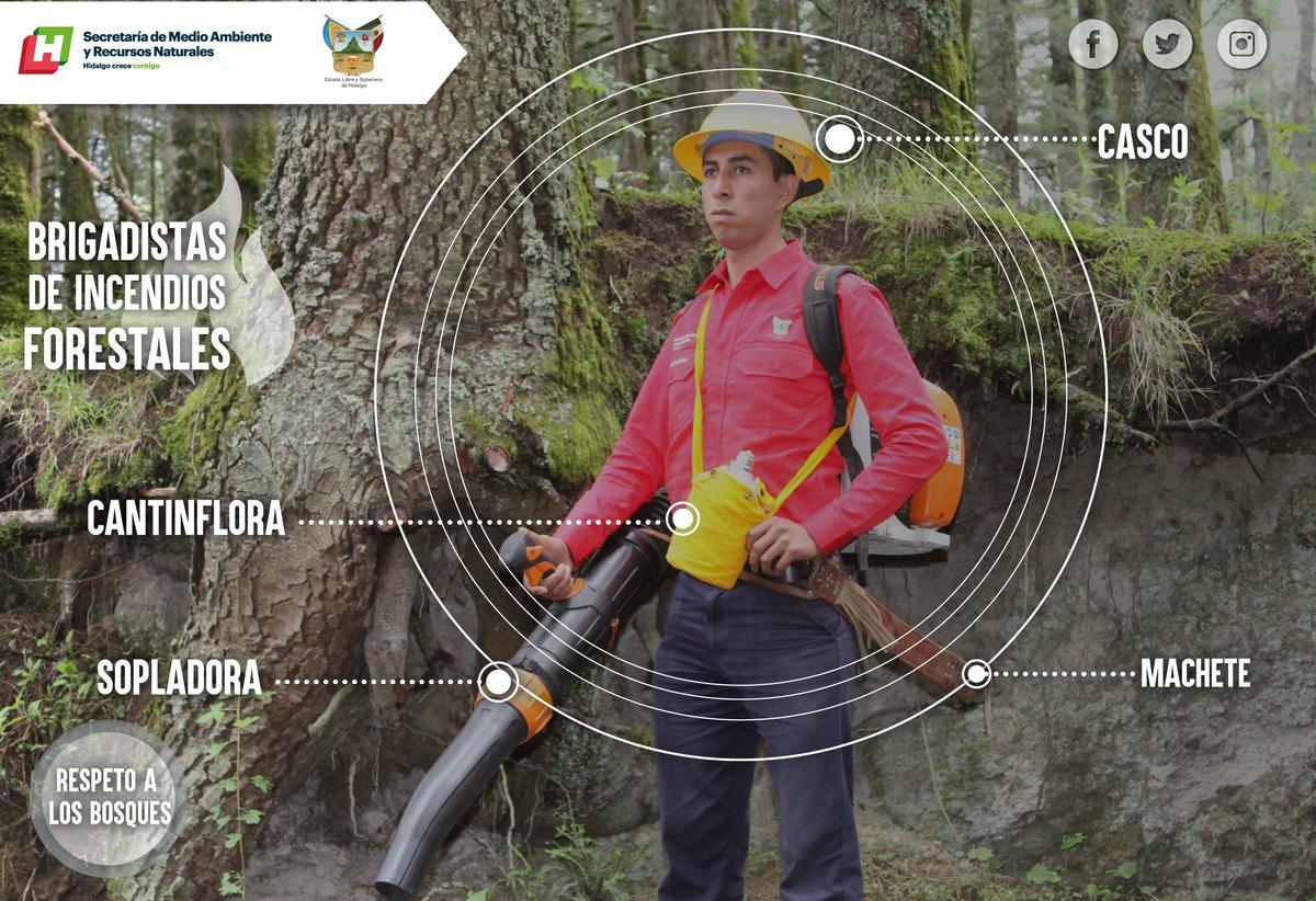 """Conoce más sobre el trabajo de los combatientes de incendios forestales  #HéroesDeLaNaturaleza   """"Los bomberos forestales somos una familia, durante un incendio trabajamos en equipo, confiamos nuestra vida a los demás compañeros"""" Dionisio Escamilla.pic.twitter.com/bzAUiahnjm"""