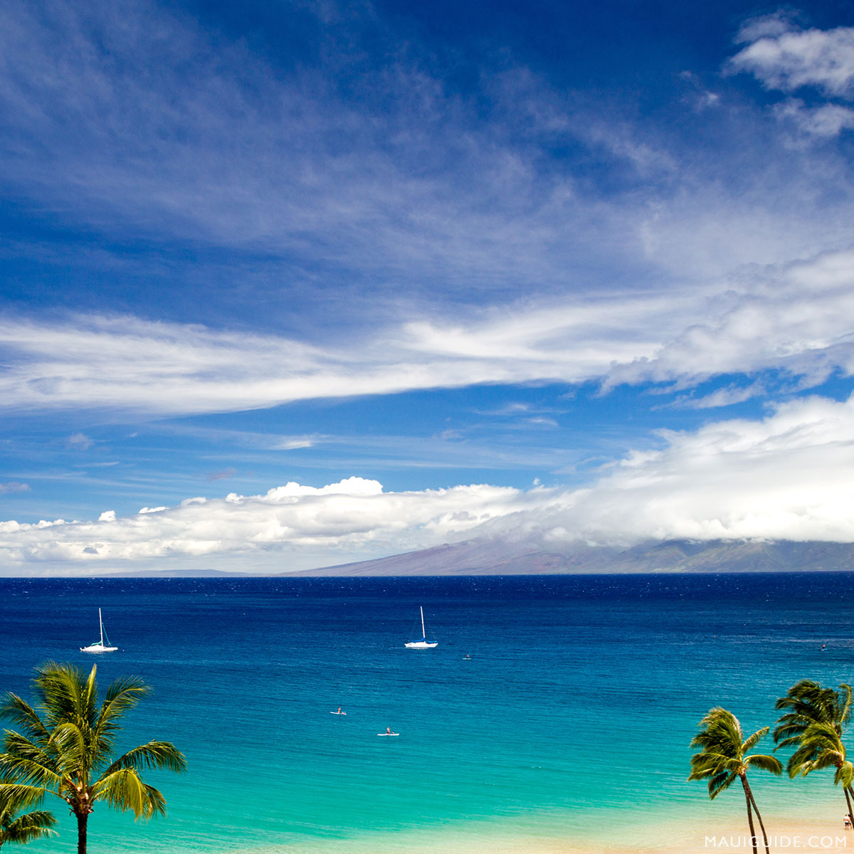 Hope you're enjoying your Saturday! #maui #hawaii #beaches #ocean<br>http://pic.twitter.com/ZaSAFlZzKj