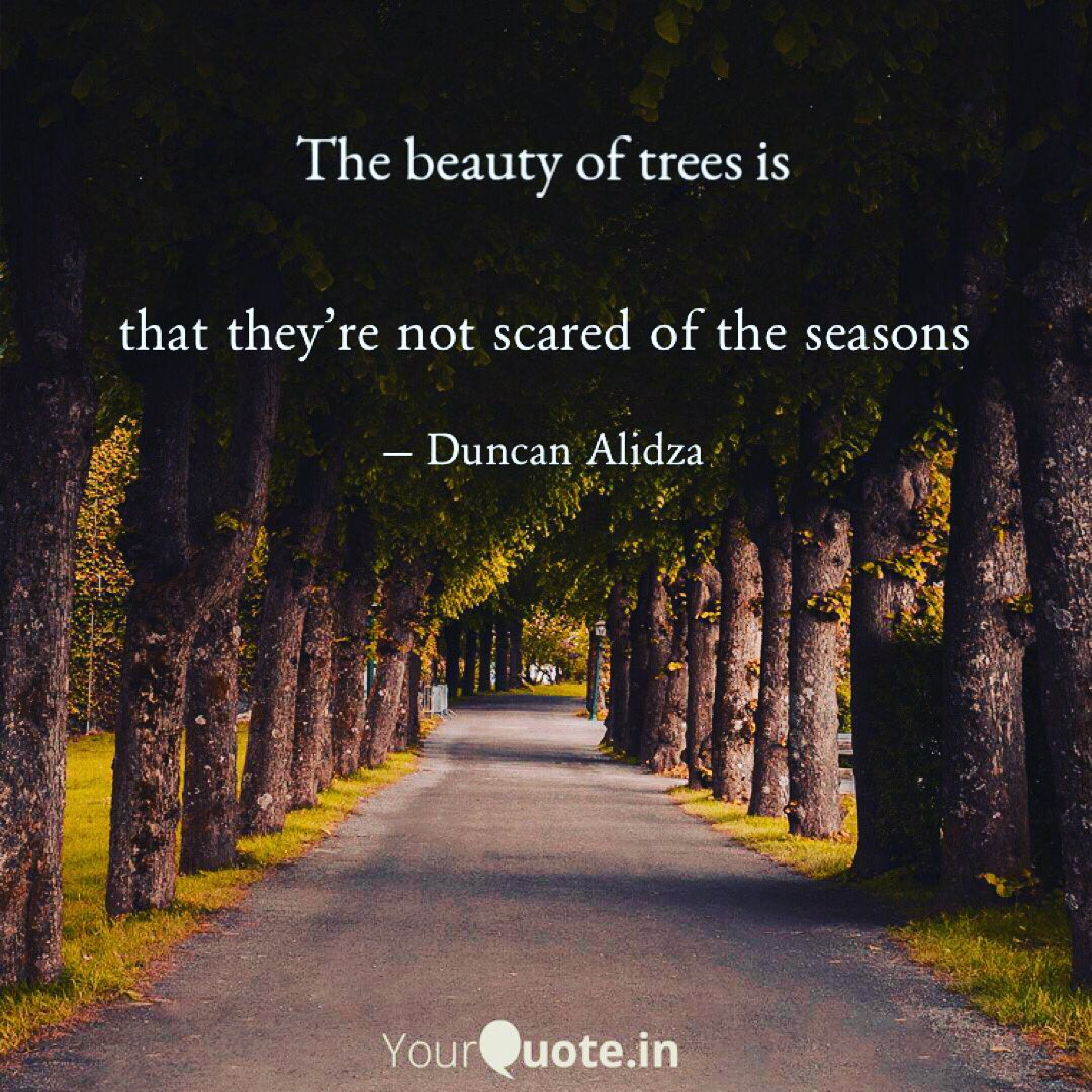 Just be all weather... a way to survive on this place called earth  #writers #dailyquote #poet #WritingCommnunity #trees #season #weather #writing #inspirational #Motivation https://t.co/zsOcbYxeIS