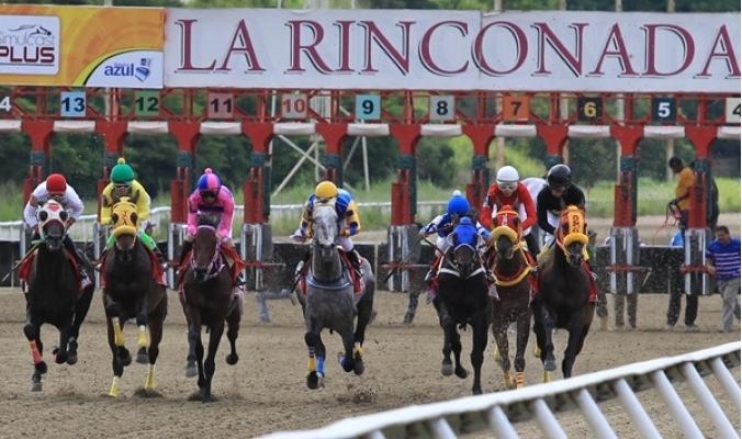 PICK SIX LA RINCONADA, DOMINGO 12/07/2020 7ma Carrera, CAMPEÓN NEGRO #10 8va. Carrera, CAÑONERA GIRL #2 9na. Carrera, KRATOS #8 10ma. Carrera, CONQUISTADORA #12 11ava. Carrera, JACKS #10 12ava. Carrera, PANTALLERA #11 #LaRinconada #pick6 #PickSix #ByArrayago #RAAC https://t.co/omjzMS0iZ1