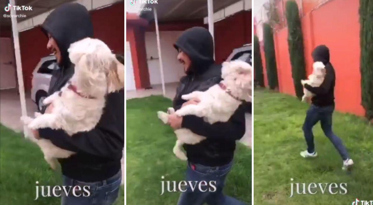 #viral Joven le enseña a su perro cómo pedir ayuda cuando intenten raptarlo | VIDEO ► https://t.co/uzRDB53iG5 https://t.co/HypsGmrJAN