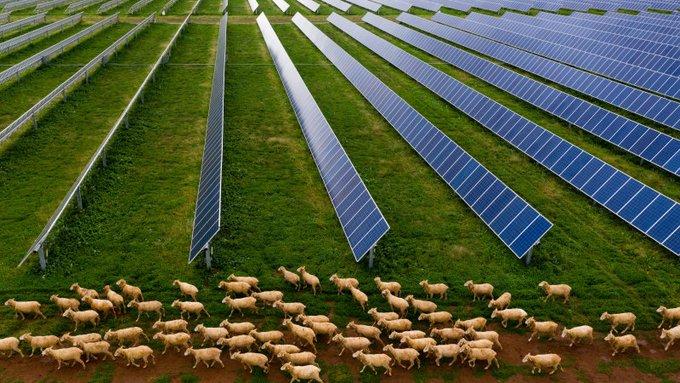 New #RenewableEnergy zone to almost match #NSW's coal-fired capacity https://t.co/VEUogOr2tK via @smh https://t.co/LEan8VE515