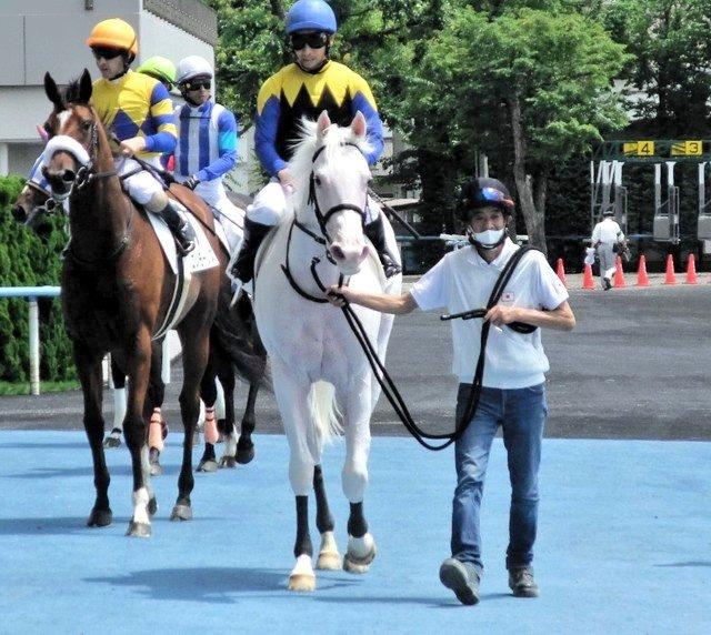 函館の新馬戦で快勝したブチコの初仔ソダシ(牝2歳)。「ホッとしました。この後は放牧に出して、次走についてはオーナーと相談したい」と須貝調教師。白毛の新馬勝ちは計3頭目で、芝での勝利は初とのことです。