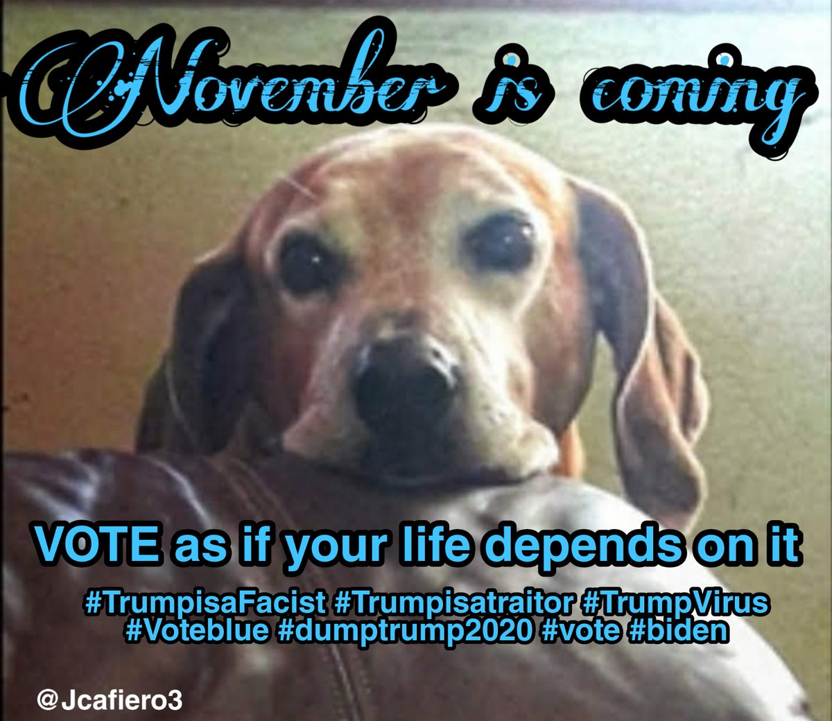#NovemberIsComing #VoteBlueToSaveAmerica2020 #VoteByMail #Resist  #resisters must unite now more than ever before.  113 days till November 3rd. #Voteblue #Resisters #GoJoe2020 #RidinWithBiden #CreepyTrump https://t.co/QwV7kGP185