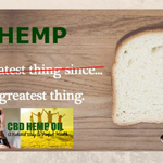 Image for the Tweet beginning: RT CbdDew: HEMP does a