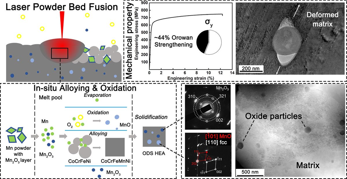 New paper: In-situ alloyed, oxide-dispersion-strengthened CoCrFeMnNi high entropy alloy.  #additivemanufacturing #3Dprinting #highentropyalloys