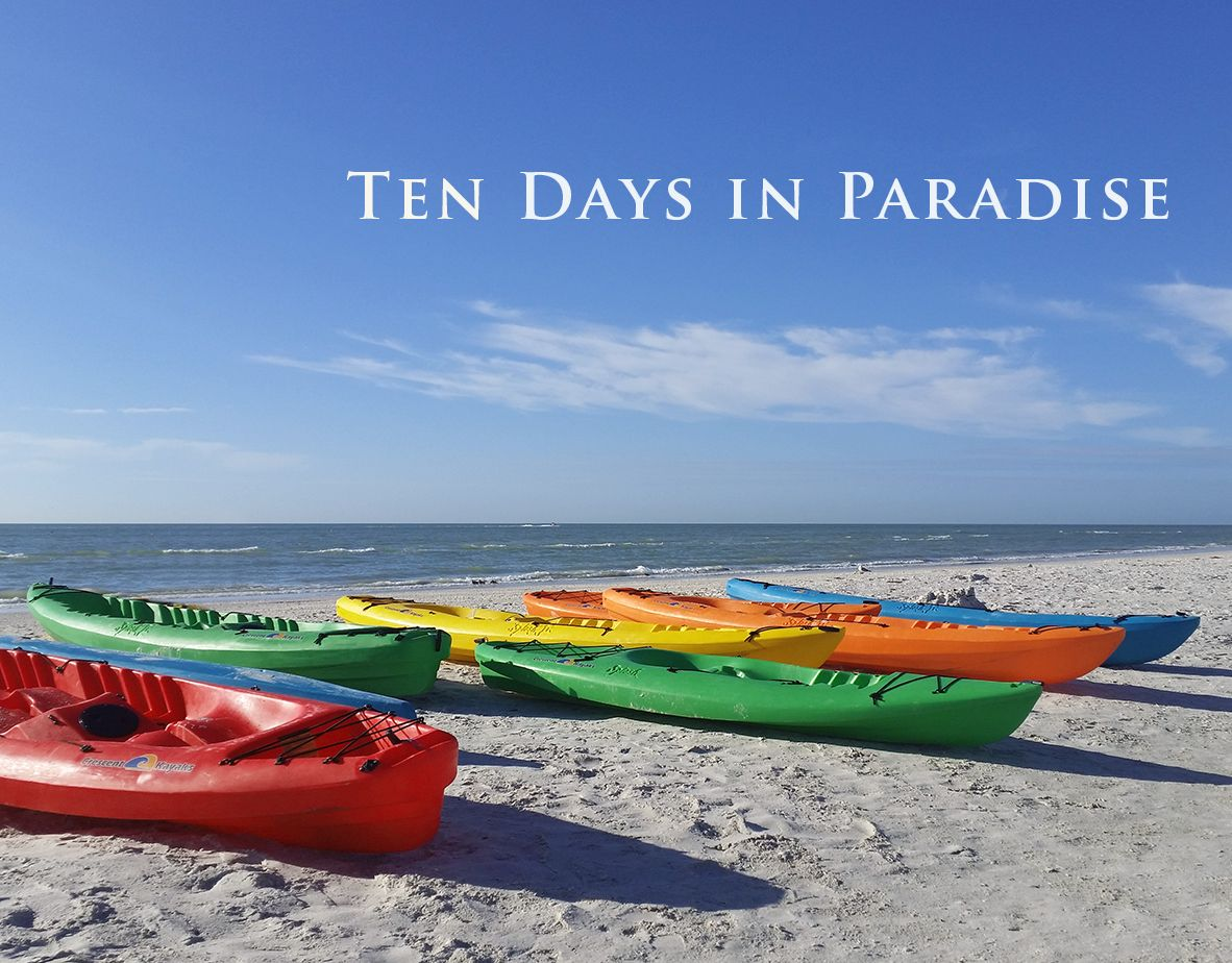 """Absolutely loved this book...a perfect beach read!""  TEN DAYS IN PARADISE https://buff.ly/39T0LDd  #KindleUnlimited #WomensFiction #FamilyDrama #VacationReads #Beachread #LoveAffair #FourthofJulyWeekend  #Sanibel #Captiva #FortMyers #BonitaSprings #Audiobook #Audible pic.twitter.com/iYmukwl9IM"