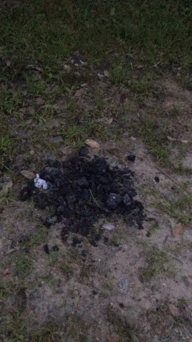炭を残すヤツにBBQする資格はない。しかも #服部緑地 の #谷あいの原っぱ は #武漢ウィルス のため現在BBQ禁止中である #中共つぶれろ #習近平 https://t.co/svN2hJ3vlP