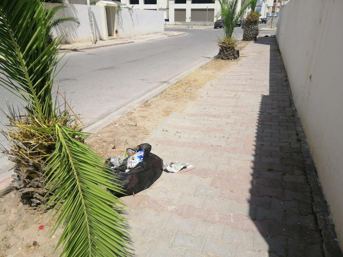 Avec une abandance de poubelles partout à côté de chaque résidence, y a toujours ces fils de foiré qui troucent l'audace de mettre leur poubelle partout et je trouve même pas une raison valide pour leur stupidité. https://t.co/kYmVMOCsMH