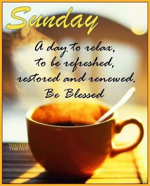 @barbadosgal @Shahbaz09878 @Zamina_Zam @LeafsGirl4life @streamlinefituk @Dianne__LadyD @LadyWiseWorld @monibhachu @imangomaa @MeAahana_ @PrachiMalik @Inspireu2Action @Hani19178044 @NoorioZehra Thanks Karen 🌹 an amazing week ahead to you and all. Happy Sunday 💐
