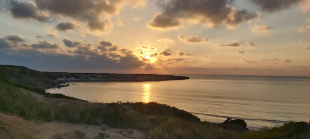 The best end of the day!  Right?  📍Akamas, #Paphos  📸 @Cyprus4Holidays  #Akamas #Cyprus #travel #wanderlust #Cyprus4Holidays https://t.co/8NZgEF1MYJ