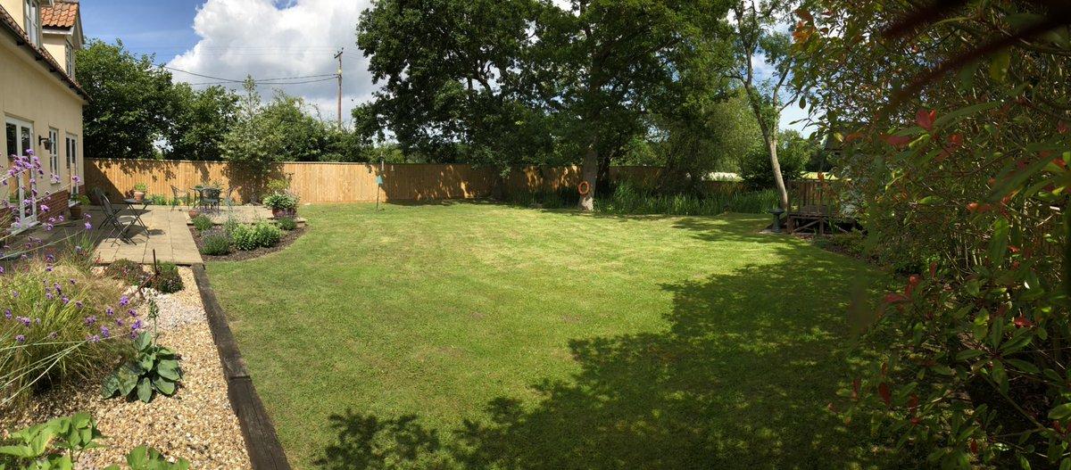 ...couple more of the garden... #summertime #lockdown https://t.co/np0XnYBDoH
