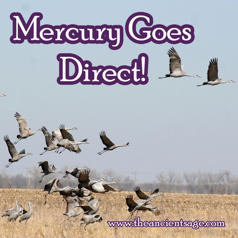 Mercury goes direct! The way forward and the correct course of action should now become more clear.  Follow your instincts. #astrology #Mercury #Cancer  #cosmicconsciousness #spirituality #consciousevolution #spiritualawakening #moon #awakening #direct https://t.co/MV2IH7lqUG