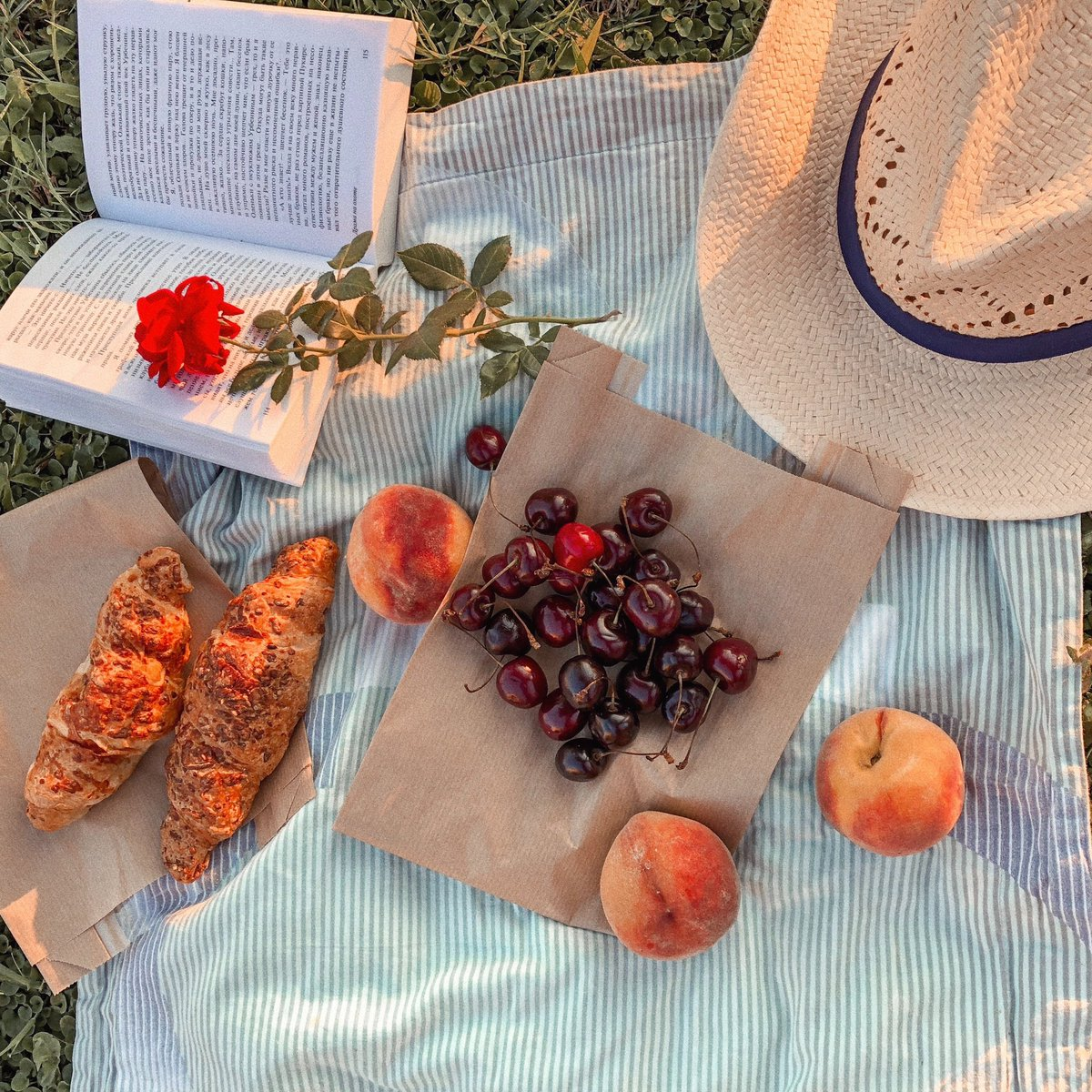 We are all waiting for things to get normal and enjoy a picnic under the warm sun   Do you agree?  . . . . . - @pexels  #picnic #picnicdate #pandemic #pandemic2020 #covid19 #coronavirus #relax #relaxing #outdoors #photography #photooftheday #peaches #book #life #enjoypic.twitter.com/v3002tVAWJ