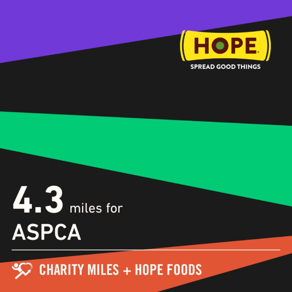 Bill and I walked 4.3 @CharityMiles for @TeamASPCA. Thx @HopeHummus for sponsoring me! #SpreadHope<br>http://pic.twitter.com/bLHzCnXGyb