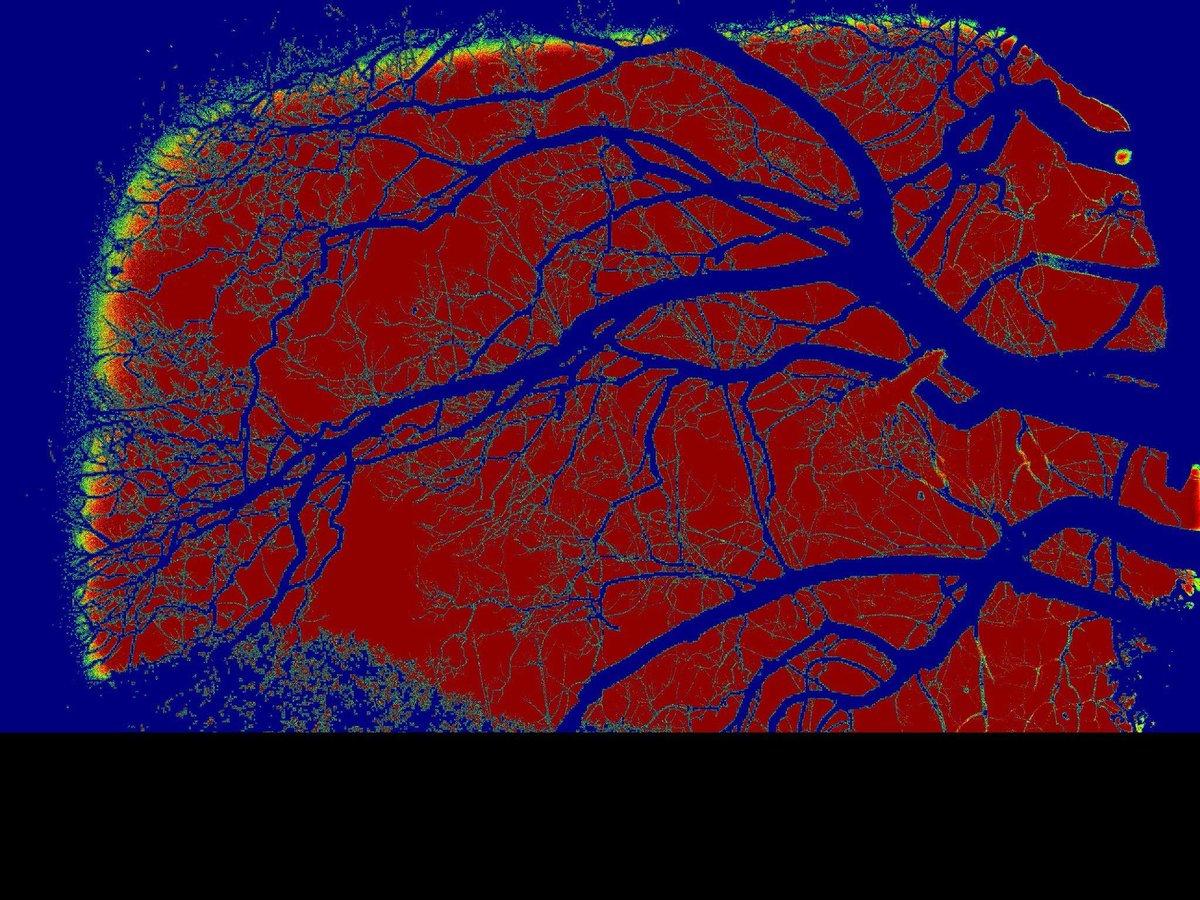 The Skeleton Tree  #PrincipeReal, de manhã és lindo, à tarde Prata...e de noite, matas... #sirbarrilaro © 2014 Artistic Zooming Photography and Composition by Duarte Barrilaro Ruas #BairroAlto #Lisboa #Tindersticks #StuartAStaples #DanMcKinna #DavidBoulter #EarlHarvin #NeilFraser https://t.co/jFF85cGR9J