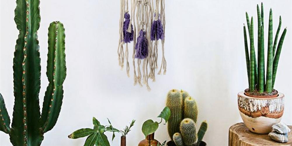 Bohemian Handmade Knitted Hanging Wall Decorationhttps://www.greenflorish.com/bohemian-handmade-knitted-hanging-wall-decoration/23.40 #PlantDeco #plantdecoration #plantdecor #plantdeco #FlowerDecor #flowerdecorations #succulent #succulove #succulover #instasucculent #green https://t.co/e6zFupGkcW