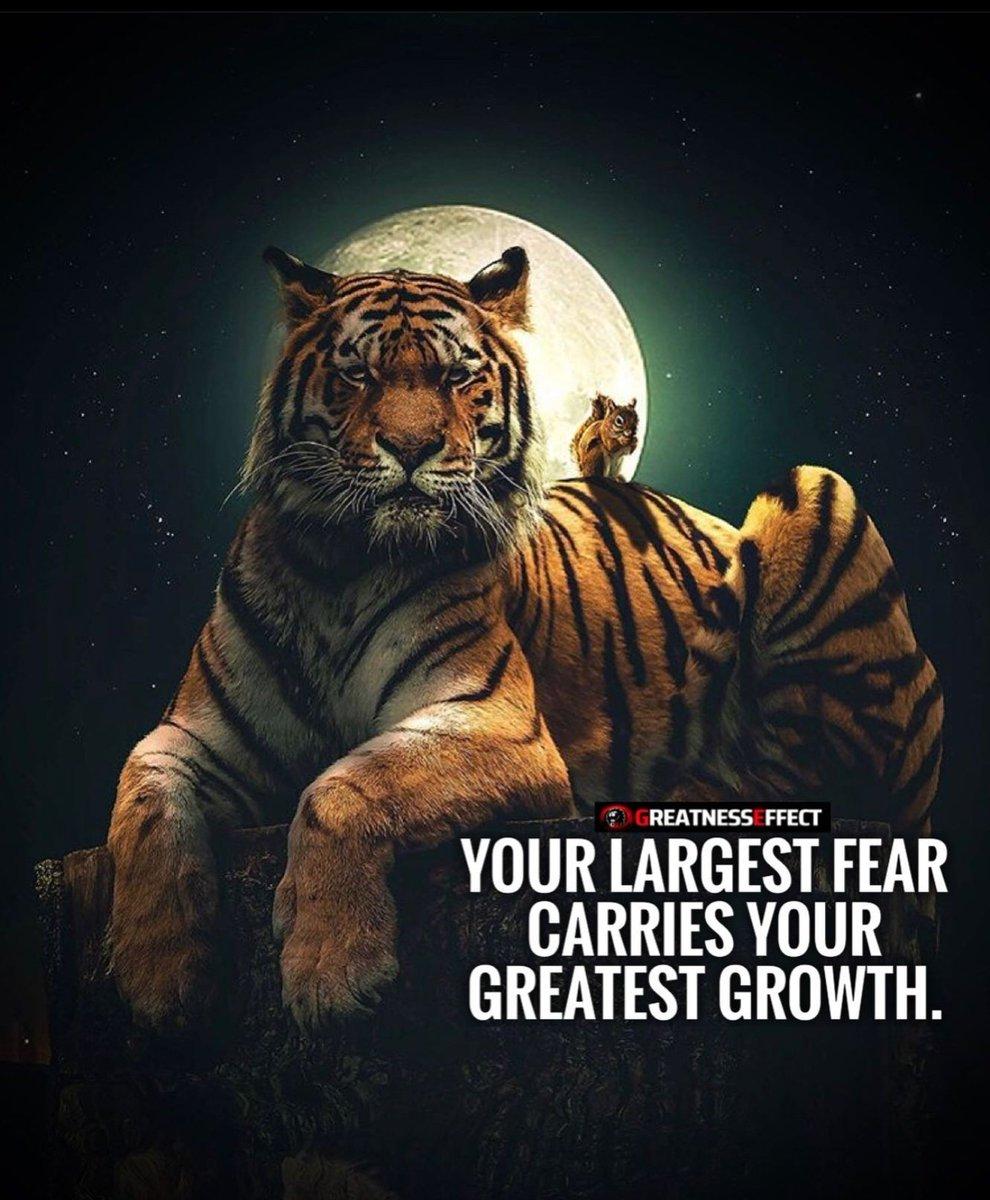 Goooooood Mooooorning, #FearlesslyForward  #BusinessGrowth  #investindia https://t.co/fXt8wU5t00