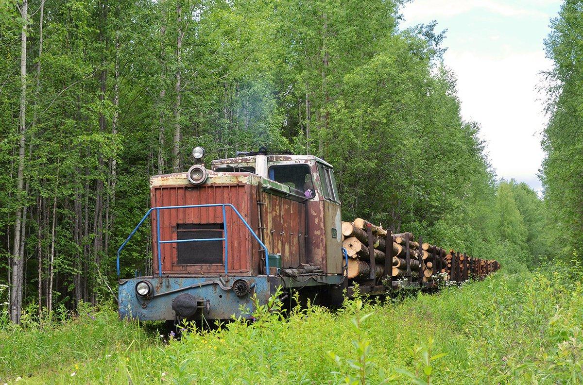 Diesel locomotive TU8-0527 with a log train on the Nyubskaya narrow-gauge railway in Arkhangelsk Oblast, northern Russia, 29.06.2020. Photo: Leg29. #Russia #narrowgauge #train #schmalspurbahn #transport #eisenbahn #railroad #railway #bahn #waldbahn #ужд #узкоколейка #logging #ТУ8pic.twitter.com/weEuNP9LY4