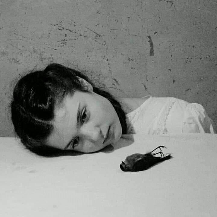 میں نہ کہتا تھا دوائیں نہیں کام آئیں گی جانتا تھا تیری آواز ہی شافی ہے مجھے  جواد شیخpic.twitter.com/385hi7x95M